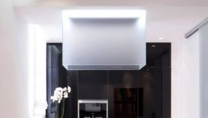 रसोईघर के साथ रसोईघर को कैसे जोड़ा जाए?