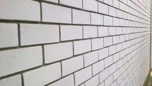 Descrizione e dimensioni dei mattoni in silicato bianco