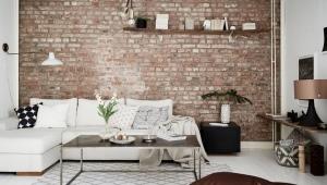 Mur de briques: caractéristiques de conception, de création et d'entretien de la surface
