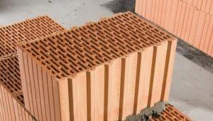 Egenskaper och huvudegenskaper hos porösa tegelstenar
