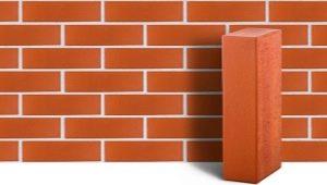 Solido mattone rosso: caratteristiche, tipi e dimensioni