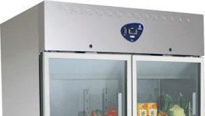 सब्जियों और फलों के लिए एक रेफ्रिजरेटर का चयन करना