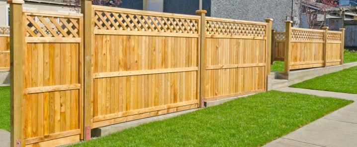 Typer av staketbrädor: egenskaper och egenskaper
