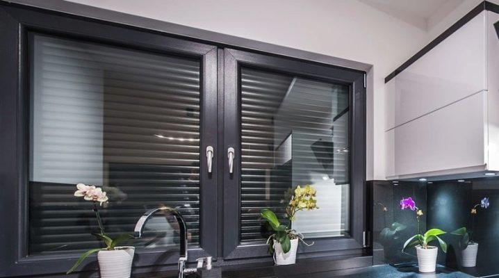 Fönster med fönsterluckor inuti glaset