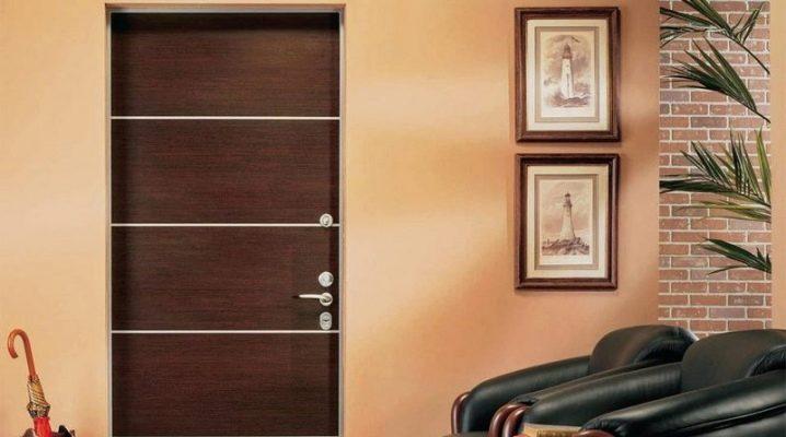Doors Zetta: advantages and disadvantages
