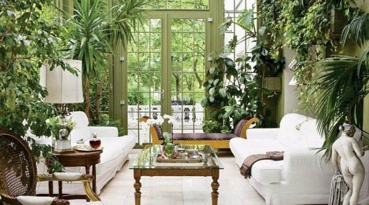 Funktioner av urval och placering av växter i det inre av ett bostadshus