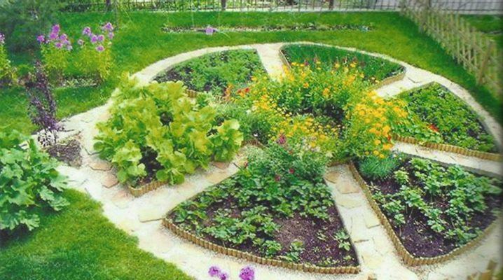 Garden and garden design at the summer cottage