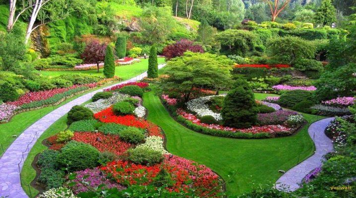 Beautiful elements of landscape design