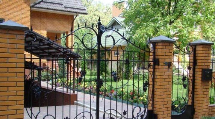 Vackra grindar och grindar för privata hus