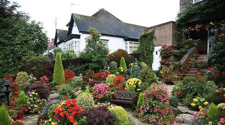 Aménagement paysager: décorer le site avec des fleurs