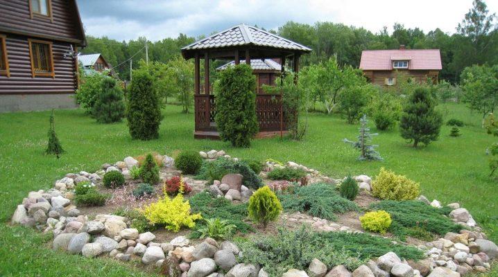 Rockery on the summer cottage: the subtleties of landscape design