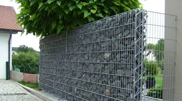Svetsat galvaniserat nät för staketet: valfri subtilitet