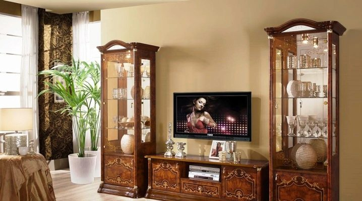 Choosing a showcase for dishes in the living room