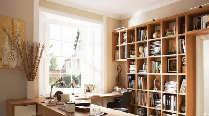 Cabinet design: ideas for organizing the working space at home