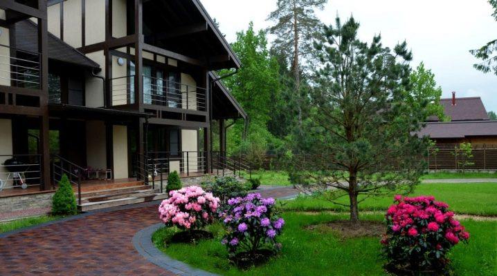 Landscape design of a country house: features, ideas and examples of implementation