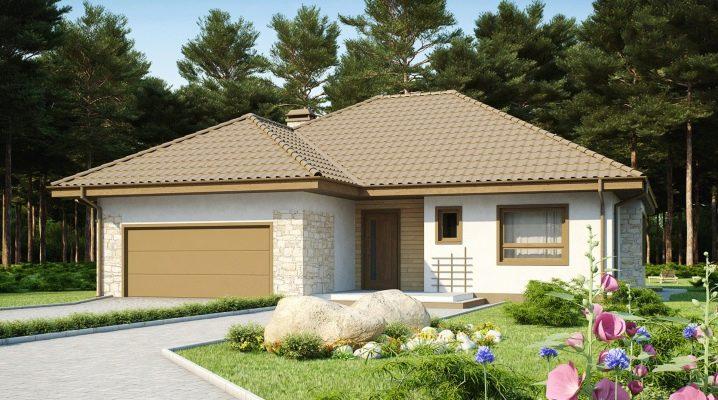 Едноетажни къщи с гараж: популярни опции