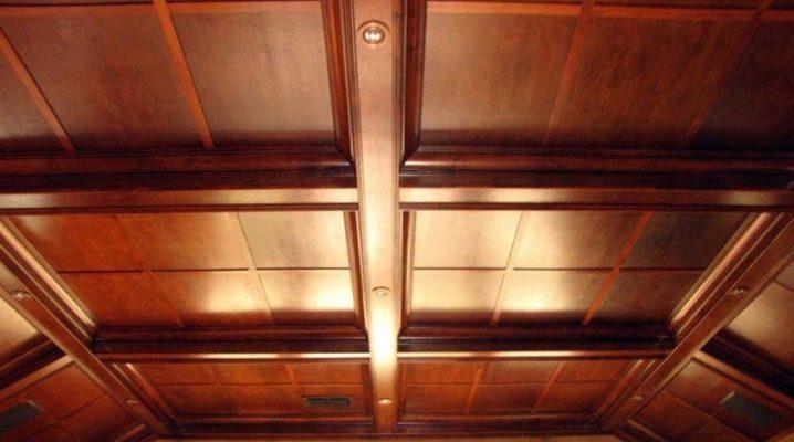 Les subtilités de l'isolation du plafond dans une maison en bois