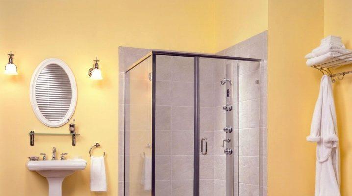 Hur man väljer dörren för duschen: typer och specifikationer
