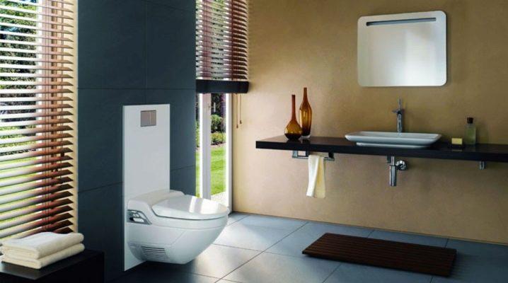 Toalett bidéskydd: hur man väljer?