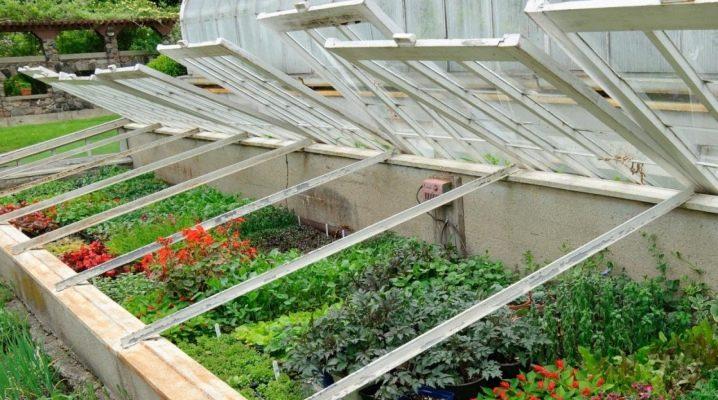 Växthus för plantor: typer och deras egenskaper
