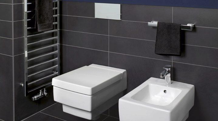 Vägghängd toalett med installation: Vad är, hur man väljer och installerar?