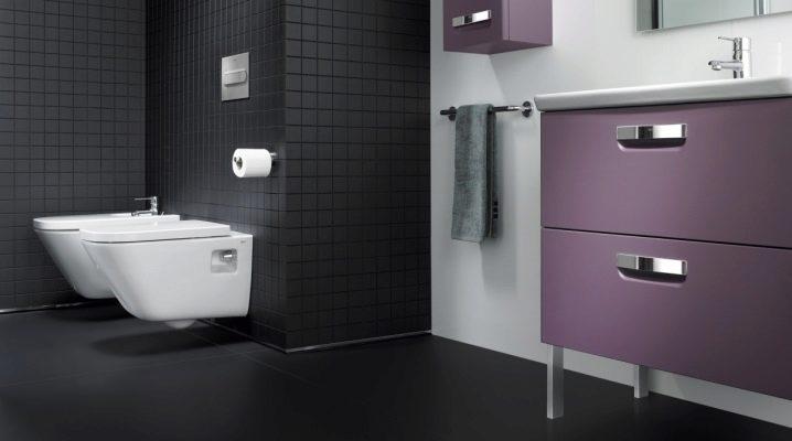 Upphängda toalettbunkar Roca: hur man väljer?