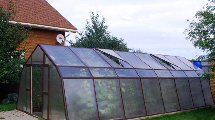 Serres de la maison de verre: caractéristiques de conception