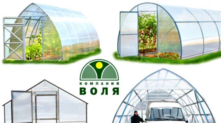 Växthusbolaget Volya: typer och installation