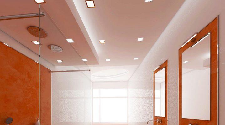 Faux plafonds dans la salle de bain: solutions élégantes en design d'intérieur