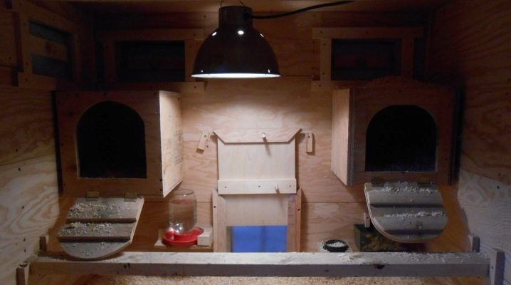Heating the chicken coop in winter: heating methods and suitable types of electrical appliances