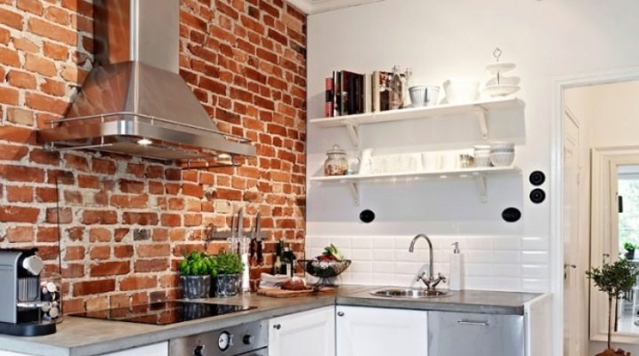 Brick wall in the kitchen: features and interesting options