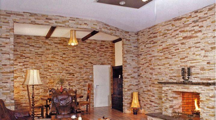 Brique en brique: caractéristiques et champ d'application