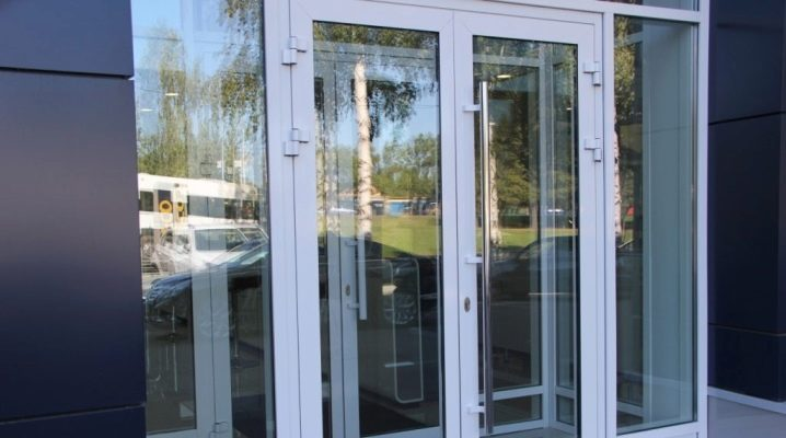 Handles for aluminum doors: features, types and selection rules