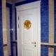 शौचालय और बाथरूम के लिए एक दरवाजा चुनना