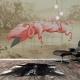 Flamingo tapeter i inredningen
