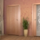 Översikt över aktuella stilar för innerdörrar