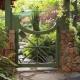 Porte de clôture: de belles idées de design