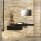 Porslinsplattor för väggar: huvudtyperna