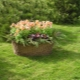Flower beds in the country: design options