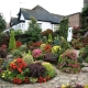 Landscape design: decorating the site with flowers
