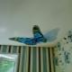 Autocollants sur un plafond tendu: caractéristiques de conception