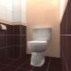 Golvplattor för toalett: Egenskaper av val