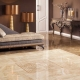 Kakel på golvet i vardagsrummet: praktiska idéer för inredningen