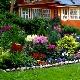 Plants in landscape design: garden design rules