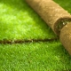 Rolled lawn: laying technology