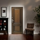 Choosing doors Torex