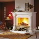Fireplaces: types and their features