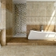 Tiles Lasselsberger: types and characteristics