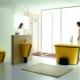 Färg toalett skålar: egenskaper av valet