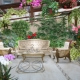 Greenhouse in the house: the most spectacular options for home and garden